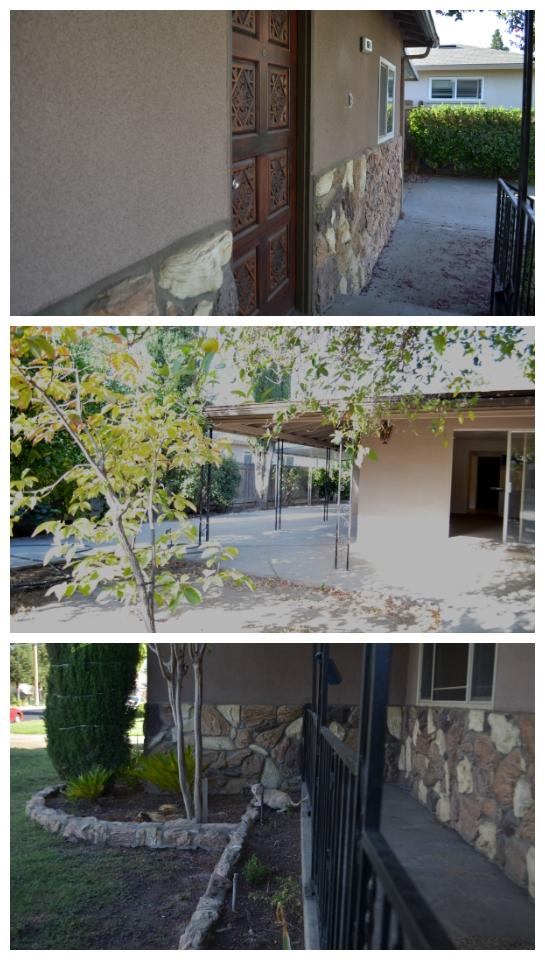 dewitt-collage4